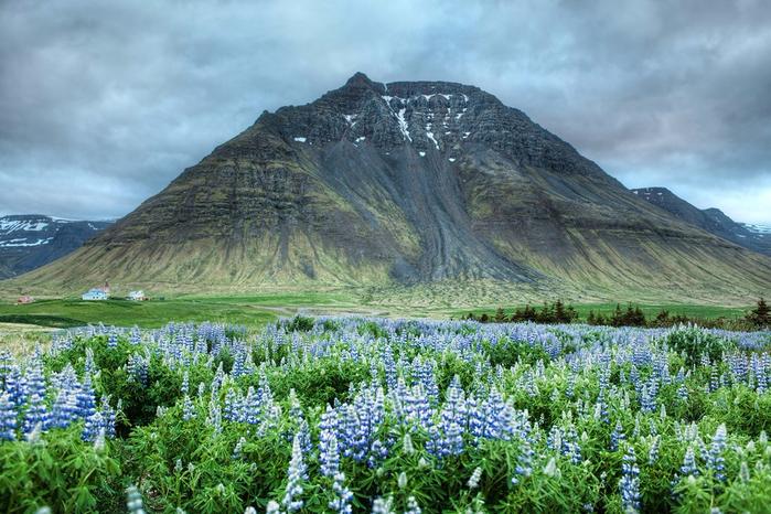 Iceland07 (700x466, 450Kb)