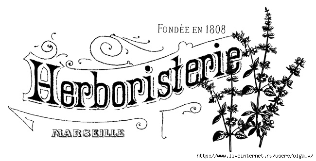 french_herb_shop_GraphicsFa (650x332, 116Kb)