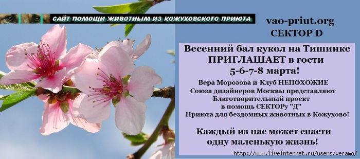3846346_Ves_bal_mart_16 (700x309, 147Kb)