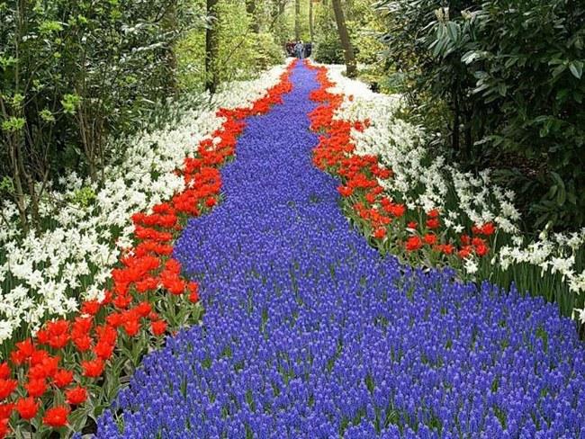 а на україні розквітають сади любимому появились