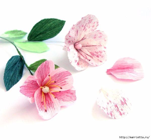 Розовые цветы - МАКИ из гофрированной бумаги (14) (600x555, 104Kb)