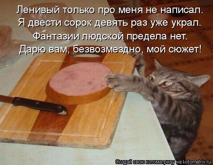 kotomatritsa_94 (700x544, 335Kb)