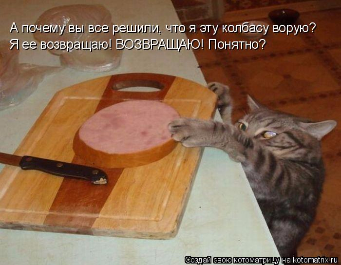 kotomatritsa_MQ (700x544, 288Kb)