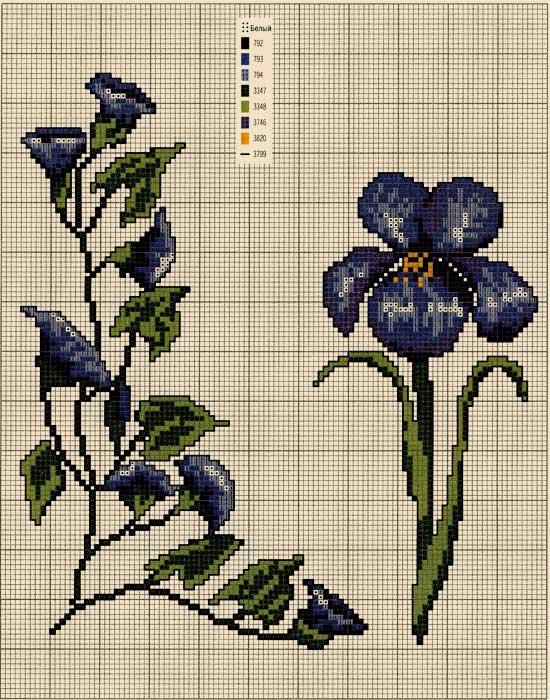 Neskolko-shem-vyshivki-krestikom-cvetov (550x700, 389Kb)