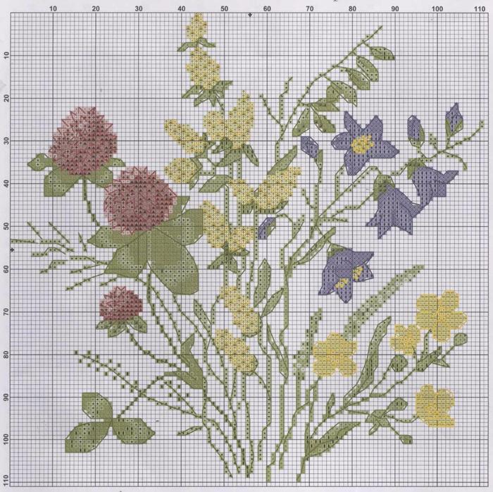 Shema-dlya-vyshivki---polevye-cvety (700x698, 508Kb)