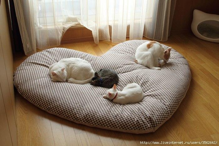 Подстилку для кошки своими руками