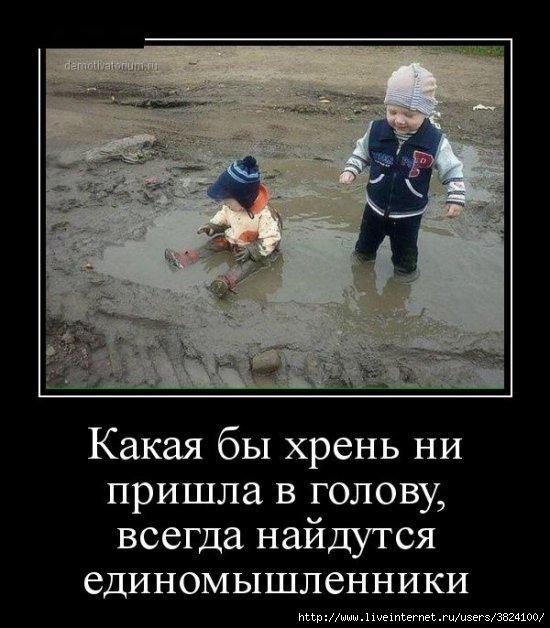 smeshnie_kartinki_14294301052 (550x628, 163Kb)
