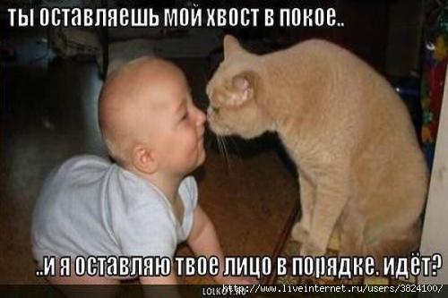 smeshnie_kartinki_133434987214042012 (500x333, 82Kb)