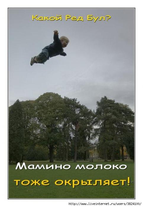 smeshnie_kartinki_133797666726052012 (484x700, 169Kb)