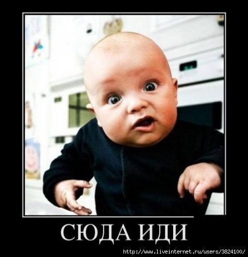 smeshnie_kartinki_134703709907092012 (500x518, 79Kb)