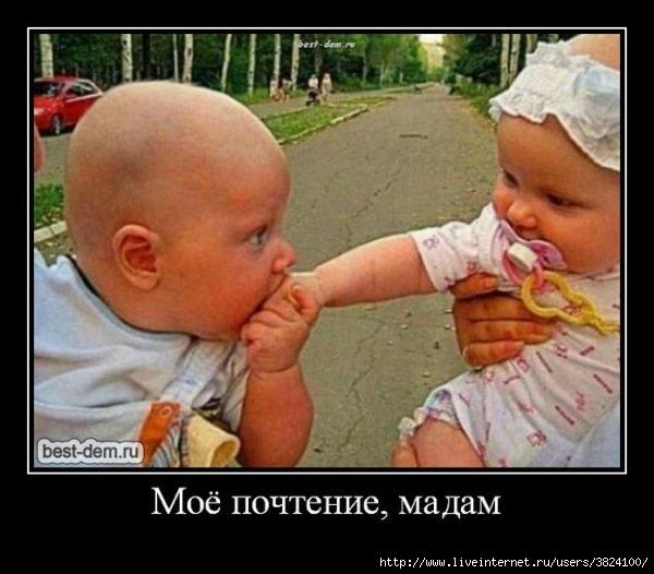 smeshnie_kartinki_135109932624102012366 (600x526, 134Kb)