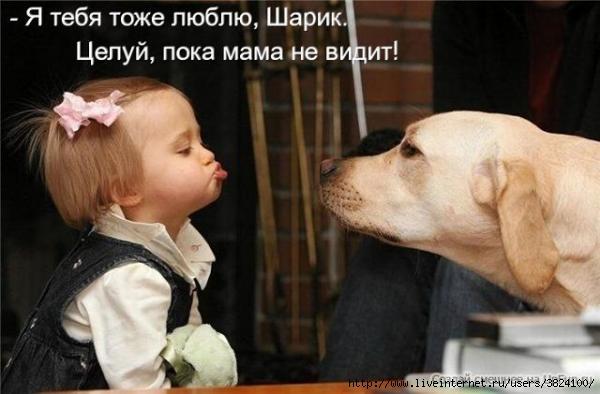 smeshnie_kartinki_135301788316112012995 (600x394, 111Kb)