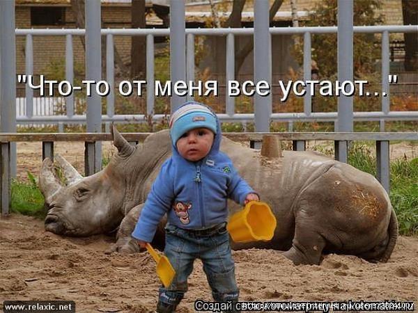 smeshnie_kartinki_136258978006032013376 (600x450, 184Kb)