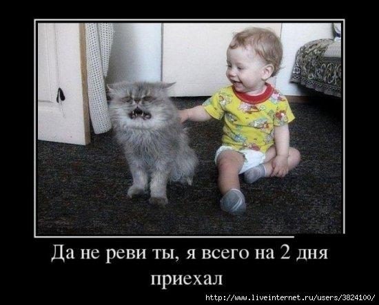 smeshnie_kartinki_137363974512072013256 (550x443, 112Kb)