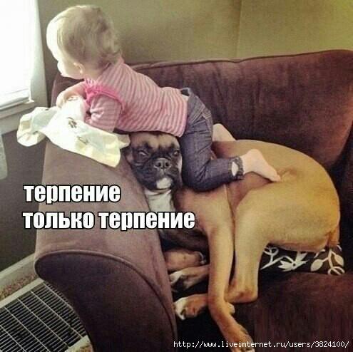 smeshnie_kartinki_1376396463130820132303 (495x494, 120Kb)