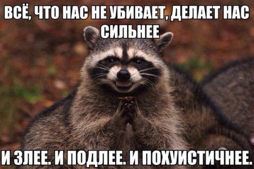 5960461_1442928371_fotomemy21 (500x334, 41Kb)
