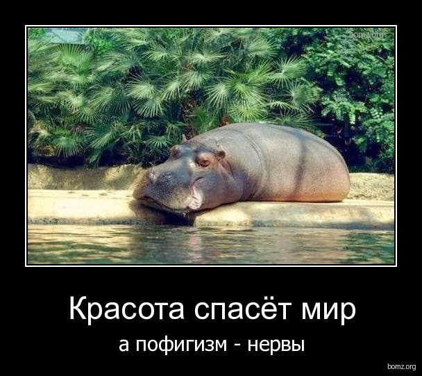956393-2010.08.03-09.40.27-demotivatori-o-zhizni-50-foto_41 (608x541, 227Kb)