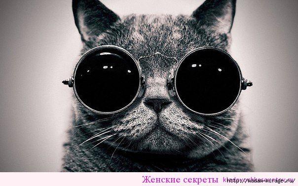 3487914_Fitnesdlyaglaztvoritchudesa (604x377, 132Kb)