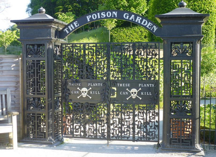 poison-garden.jpg.CROP.article920-large (700x509, 471Kb)