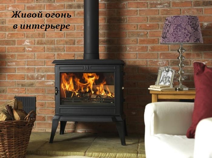 1457101739_ZHivoy_ogon__v_inter_ere (700x522, 514Kb)