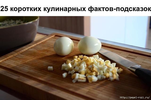 4403711_image22 (640x424, 118Kb)