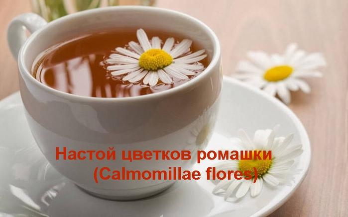 """alt=""""Настой цветков ромашки (Calmomillae flores)""""/2835299_ (700x437, 164Kb)"""