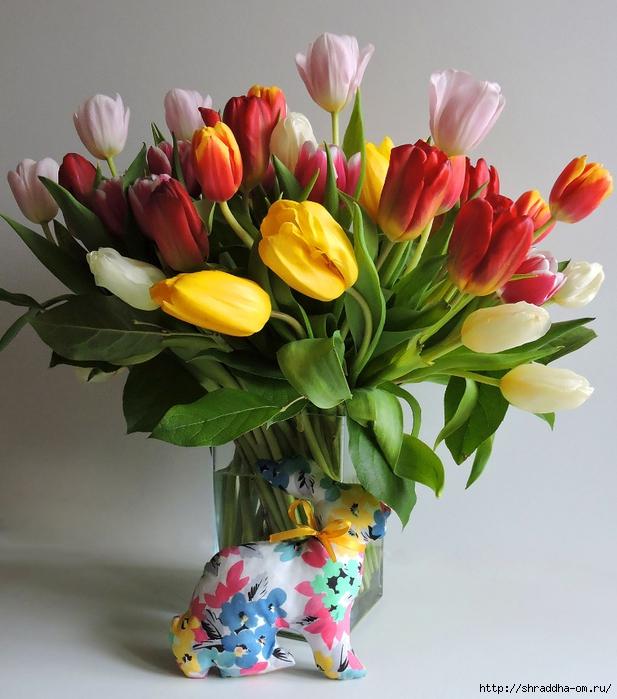 Тюльпаны ДР (16) (617x700, 313Kb)