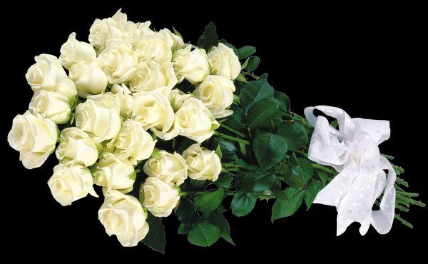 Песни букет из белых роз