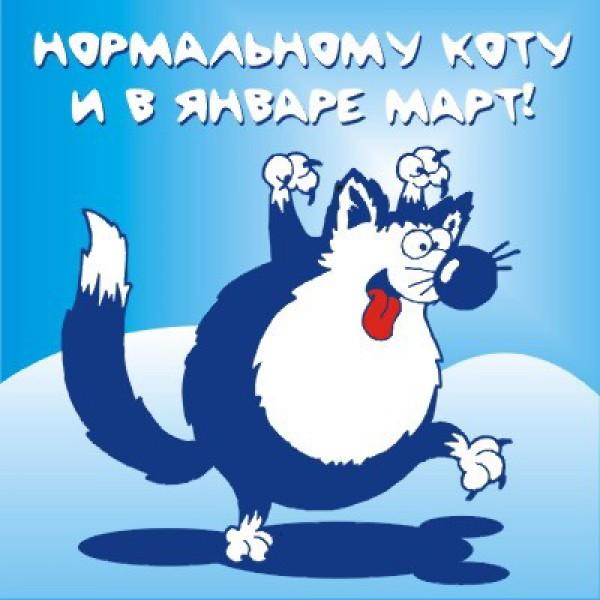 111134773_t_kot_mart02_114 (600x600, 66Kb)