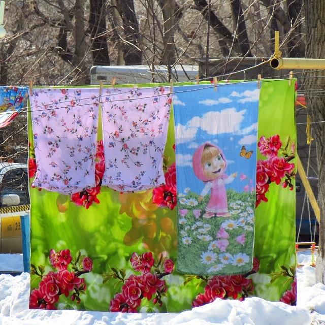 Море цветов весной. Валерий Камбалин, Владивосток, 08 марта 2016 г./1354714_8_Marta_2016_masha (640x640, 163Kb)