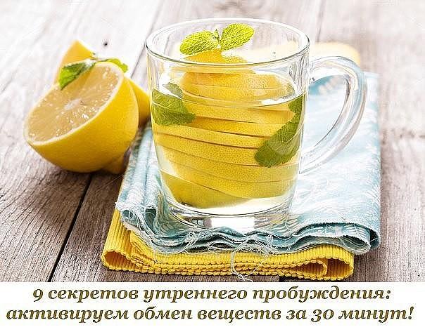 5239983_voda_limon (604x473, 94Kb)