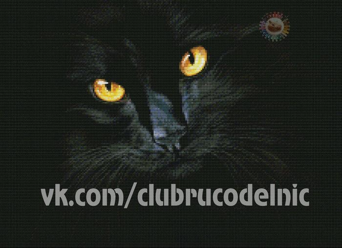 Black Magic (700x507, 526Kb)