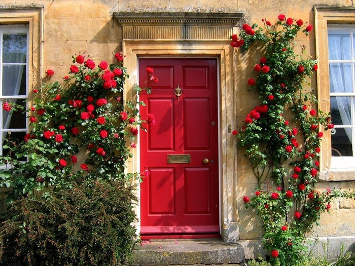 doors_flowers_8 (700x525, 359Kb)