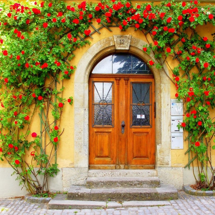 doors_flowers_15 (699x700, 487Kb)