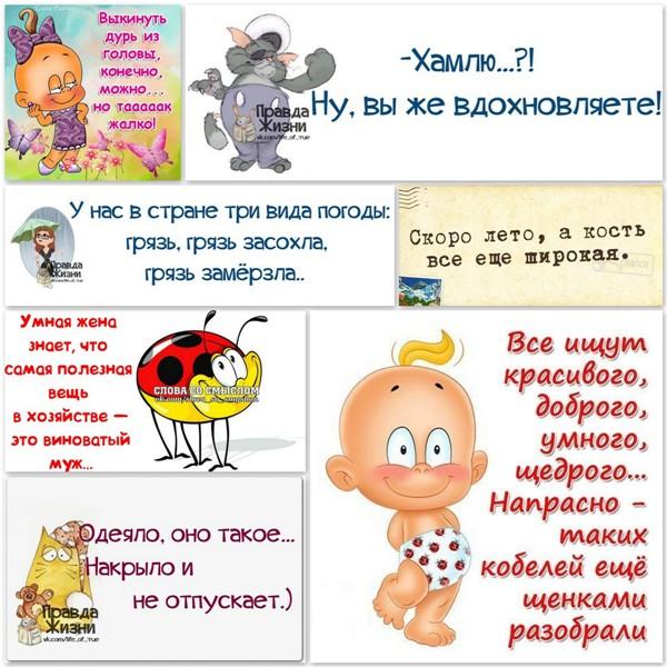 5672049_1395084869_frazochki (600x600, 114Kb)
