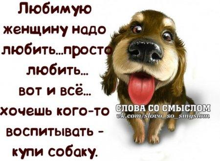5672049_1395084762_frazochki7 (450x329, 36Kb)