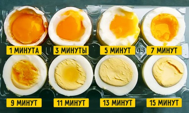 яйца (604x362, 231Kb)