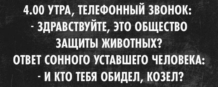 1007_1130608643630532_5185234554608281540_n (700x278, 146Kb)