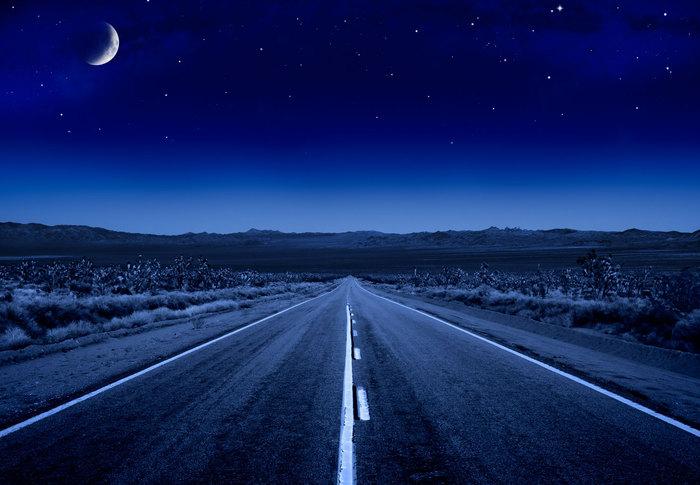 dumball_road (700x485, 71Kb)
