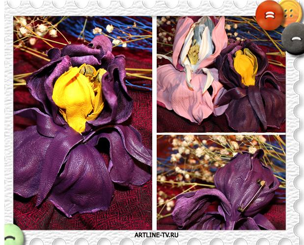 фиолетовый ирис трио (619x500, 528Kb)