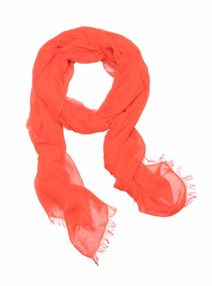 orange_01_b (423x570, 135Kb)