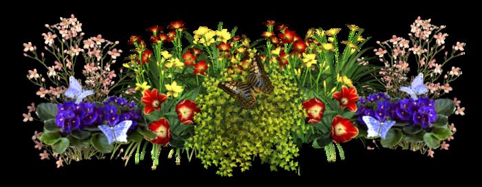 5175327_flowers2 (700x272, 334Kb)