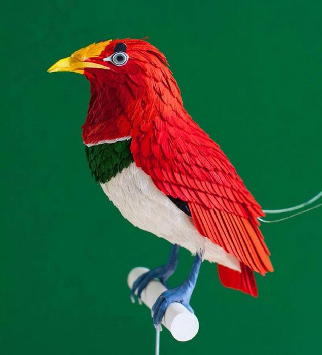 бумажные птицы Дианы Бельтран Эрерра 3 (635x700, 282Kb)