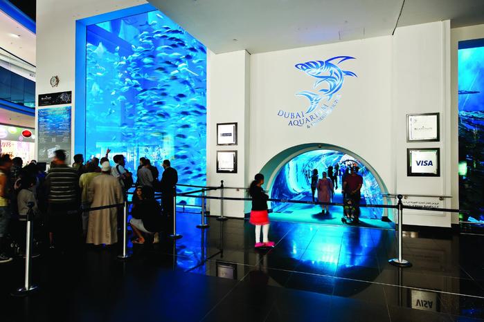 дубайский аквариум в дубай молл 7 (700x466, 382Kb)
