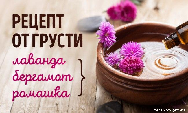 5365358_aromati_dlya_nastroeniya (650x390, 134Kb)