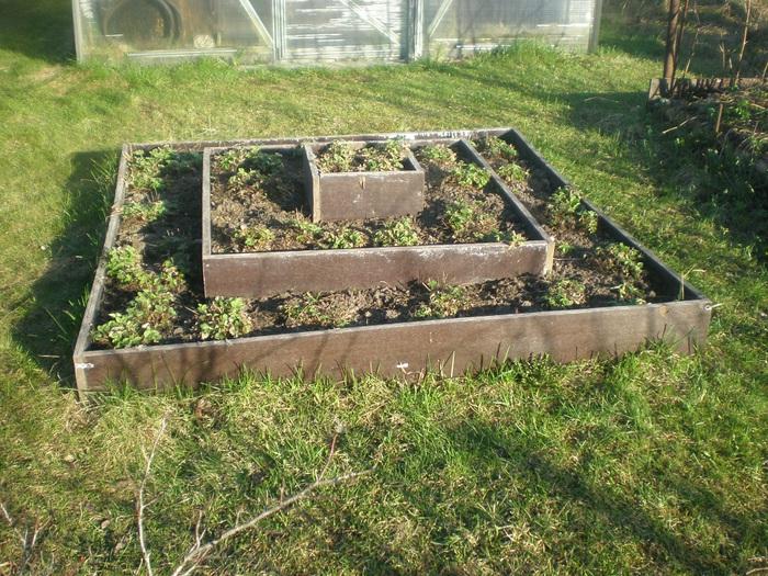 Как своими руками сделать огород красивым своими руками фото 77