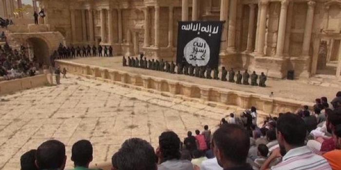 пальмира игил (700x350, 227Kb)