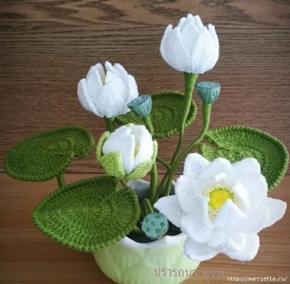 Цветы крючком. Белая кувшинкаЦветы крючком. Белая кувшинка (1) (583x572, 181Kb)
