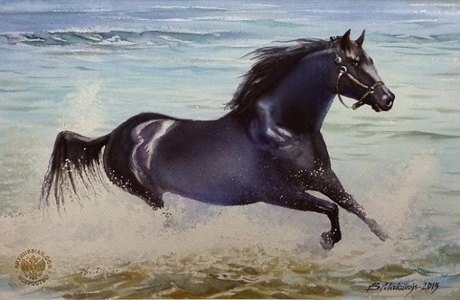 Лошадь, скачущая по кромке моря. (652x426, 263Kb)