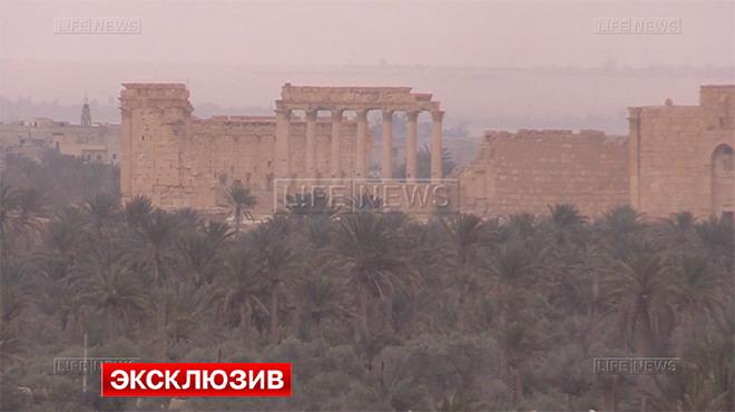 Пальмира (660x370, 159Kb)